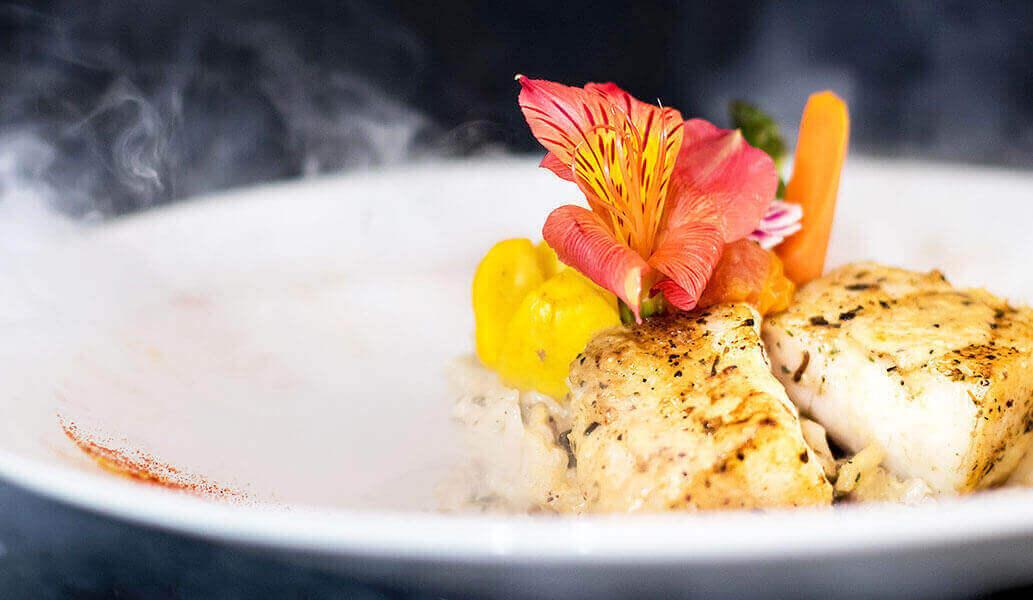 Mejor comida del mar, Puerto Vallarta
